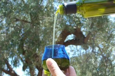Visite Guidate Degustazione Olio